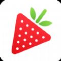 草莓樱桃色多多直播